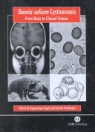 obrázek zboží Taenia solium Cysticercosis: From Basic to Clinical Science