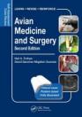 obrázek zboží Self-Assessment Color Review Avian Medicine and Surgery  Second edition